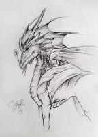 Quick Dragon Sketch by Elssence