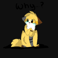 Why? by BerrehEmu