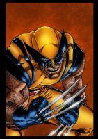 Wolverine Cover Color test by likwidlead