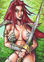 Red Sonja JAM by Dangerous-Beauty778