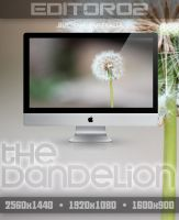 The Dandelion Wallpaper by GavinAsh