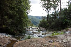 STOCK - Springbrook 2012-70 by fillyrox