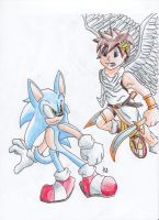 .:Blue Vs White:. by AzureDreamrealm