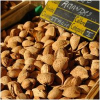 Almonds on the marked by MissUmlaut