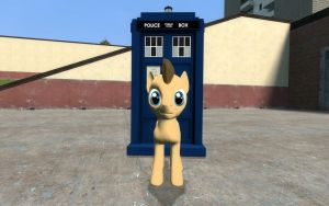 Doctor Whooves and The TARDIS by Emilythedog661