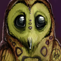 Speedpainting - Owl by LONelloid