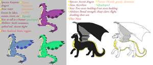 Karprite and Arcritt Dragon Species by TheDragonInTheCenter