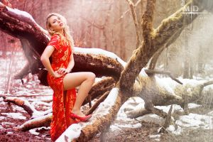 Red Winter - V by MD-Arts