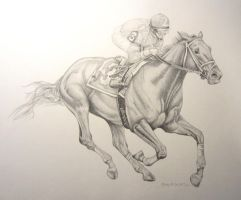 Race Horse drawing by stlcrazy