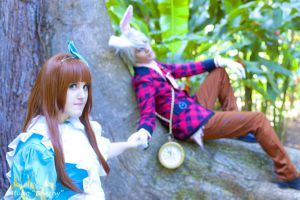 Heart-no-kuni-no-alice-cosplay by PriSuicun