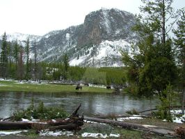 yellowstone 4 by todds201
