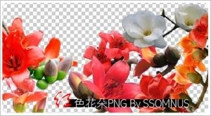 Red flower png by ssomnus