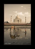 Classic India by eric-taylor