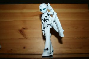 Drossel pose 1 by FezFindie44