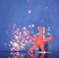 Summer Bokeh by xChristina27x