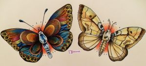 The Butterfly and the Moth by stranger-thn-fiction