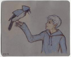 Jack Frost and the Hooded Crow by nan-says