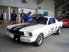 1965 Mustang GT350 by Pikachu25sci95vt
