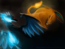 Charizard X vs Y by NightCrystalDragon