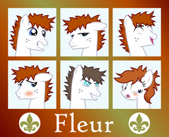 MLP OC Expressions : Fleur by outlaw4rc