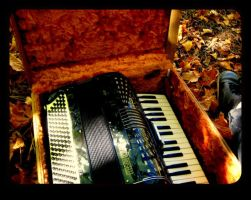 accordion with leaves KC 11 2011 by Noreiarain