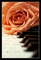 Ode to The Music Man by TeaPhotography