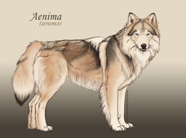 Aenima Reference by sevas-tra