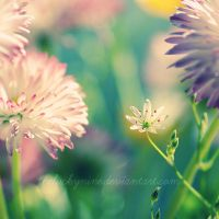little by theluckynine