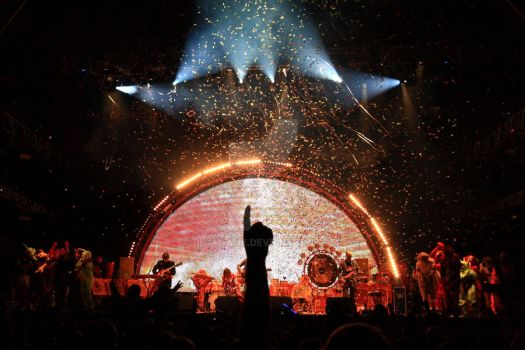The Flaming Lips by Illaname