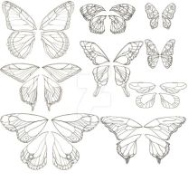 Butterfly Wings Designs by DragonLadyhere