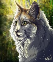 Sun Cat by WolfRoad