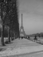 Grey Winter by Tpl-photo