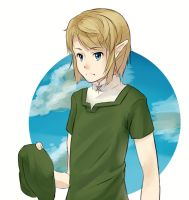 Hatless Link by arkazain
