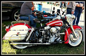 Gorgeous Panhead by StallionDesigns