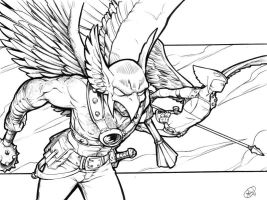 Hawkman and Hawkgirl by AdamWithers