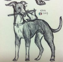 North Italy Doggie by DStorm1771