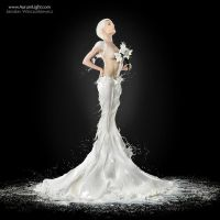 The Milky Bride - AurumLight by Jaroslav-AurumLight