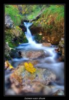 Autumn water dream by joffo1