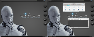 Linux Mint Maya 13 KDE Be::Shell/Bespin by giancarlo64