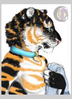 EbonyTigress - Cropped Preview by lenzamoon