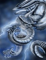 .storm dragon. by XRosewaterX
