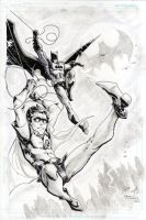 Batman and Robin by FreddieEWilliamsii