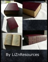 Old Book 1 by LiZnReSources