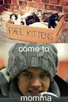 Harry Loves Cats by LulithaBrito