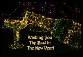 Wishing You The Best in The New Year by TeaPhotography