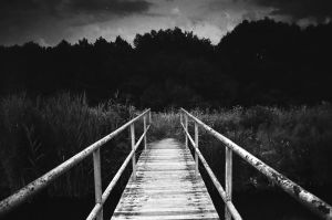 a pier towards the woods by highzor