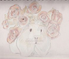 Guinea Pig with Rose Wreath by Moondancer3