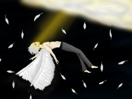 Contest: Falling from Heaven by Akyia
