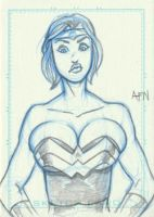 Power Girl as Wonder Woman by Nortedesigns