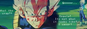 Vegeta and Goku banner by Amersss